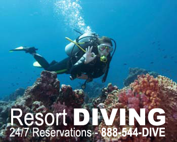 Resort Diving Reservations
